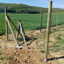 Оградна система URSUS на дървени импрегнирани стълбове - Овощна градина в района на с.Калотина