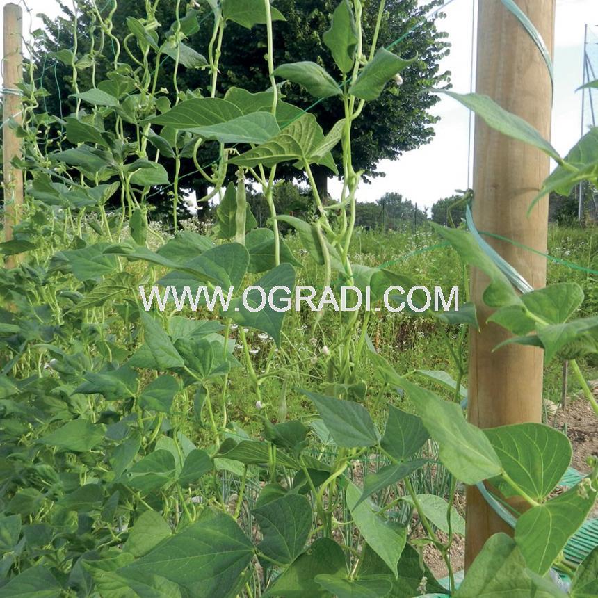 Пластмасови мрежи FLORA за увивни растения